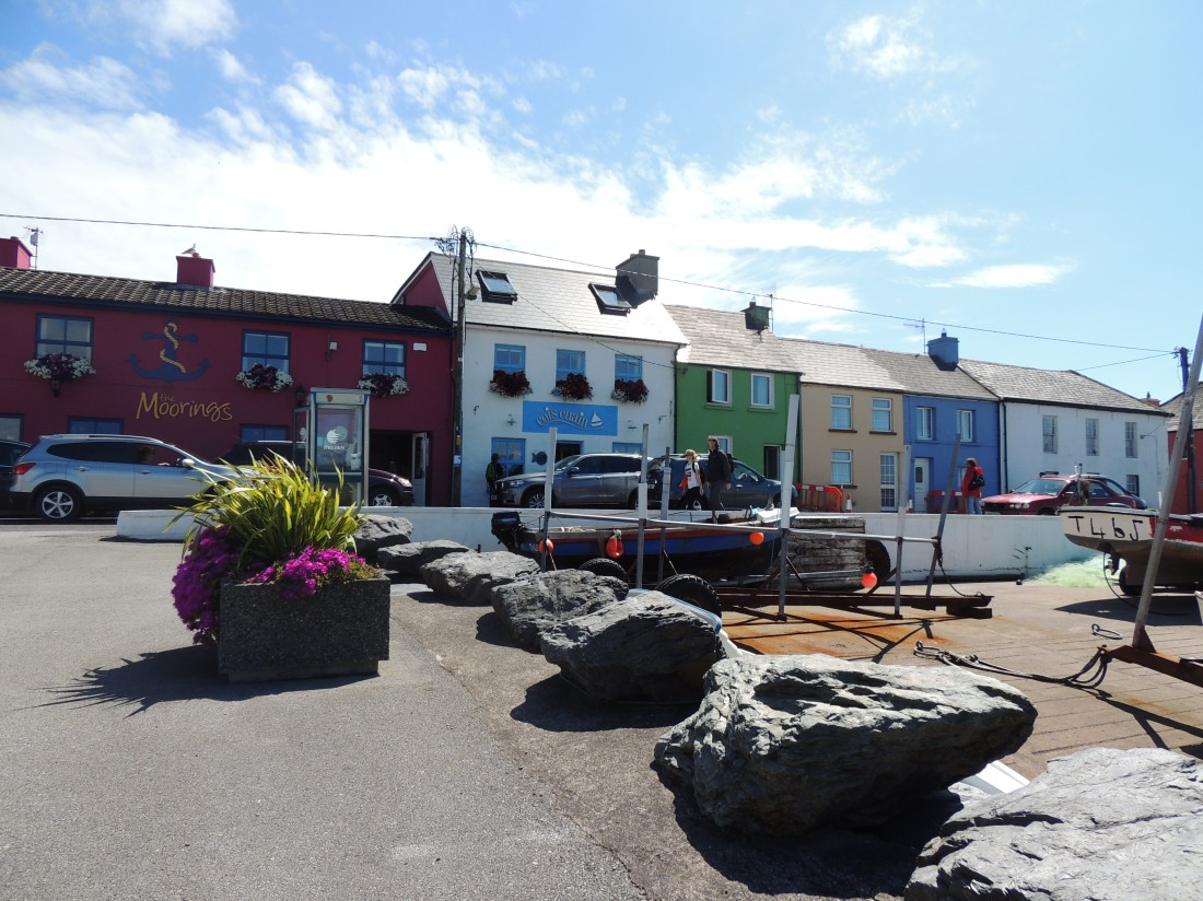 Vibrant Port Magee