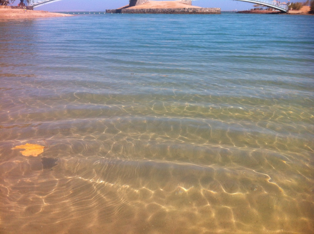Lagoon at Gouna, deceptively calm.