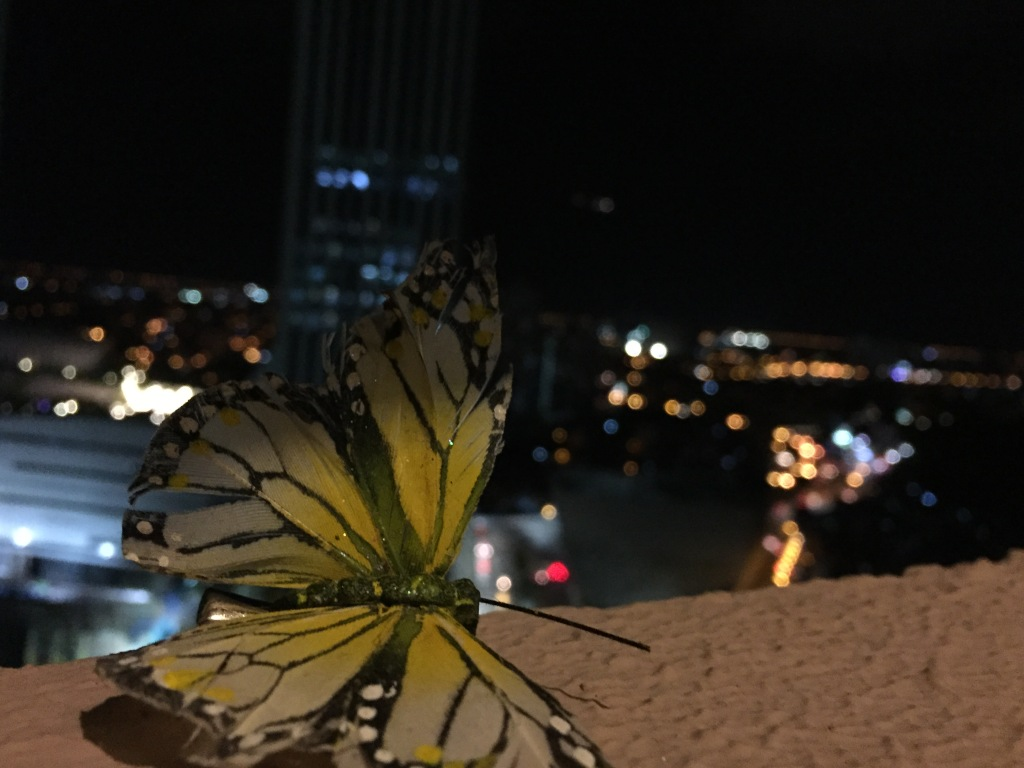 Gretel's butterfly taking in the view of Manila at night