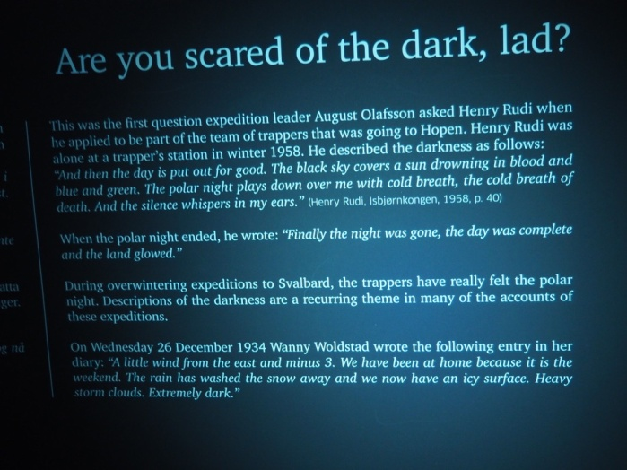 This exhibit was displayed in a dark room to imitate polar night. I took this photo by light of my flashlight.