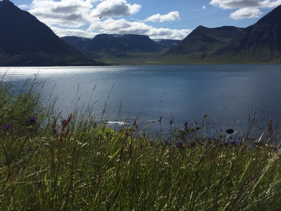Iceland7